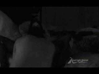 ليلة واحدة في شينا الشريط الجنسي