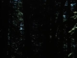 XXX الكلاسيكية: الأوهام خاصة 1 (1983)