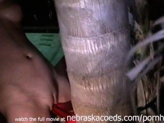 حزم على الجنس مع الفيديو شجرة المنزل
