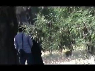 9hab الجزائر الجنس