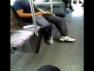 قرنية في الحافلة (للقبض على ذبابة؟)