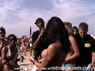 أكبر حزب الشاطئ في الفتيات حقيقية العالم وامض كس والثدي بادري