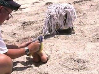 قاسية التعذيب دغدغة على الشاطئ، مكمما ومعصوب العينين